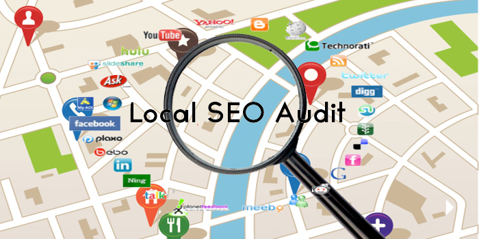 best damn local seo audit